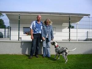 Dalmatiner Zuchthuendin Normandie von Abasko